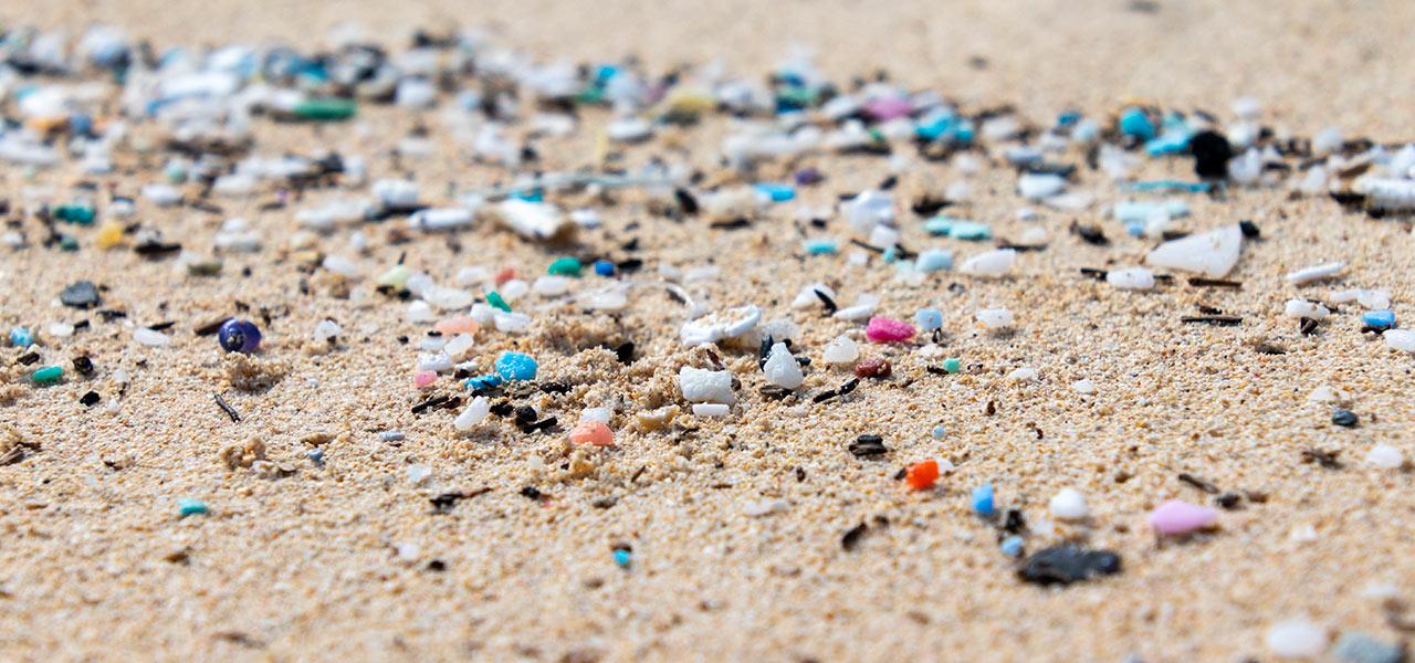 inquinamento ambiente marino