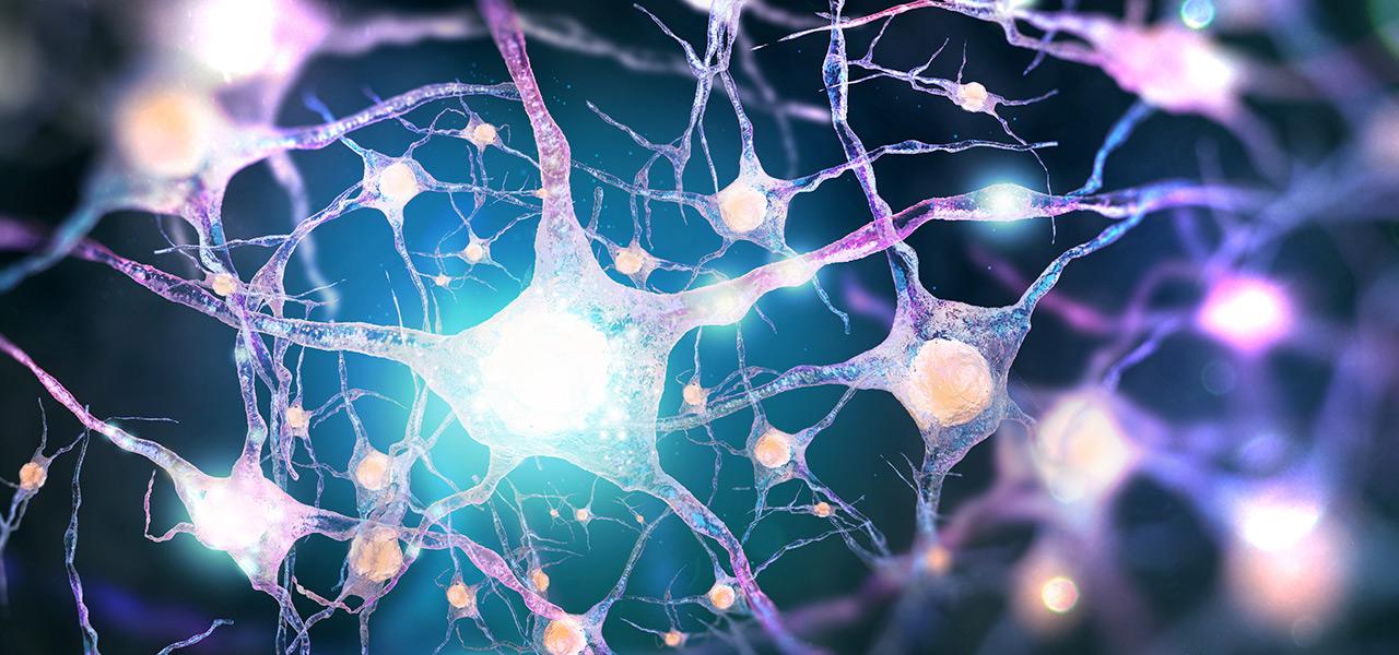 reti neuronali