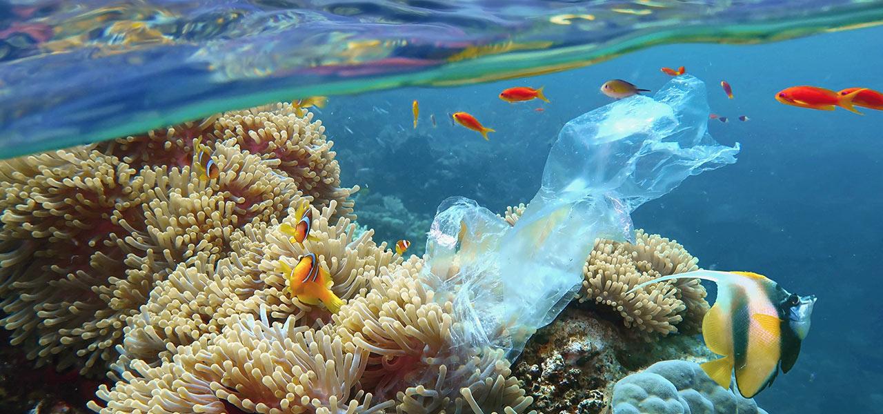 tutela ambiente plastica in mare