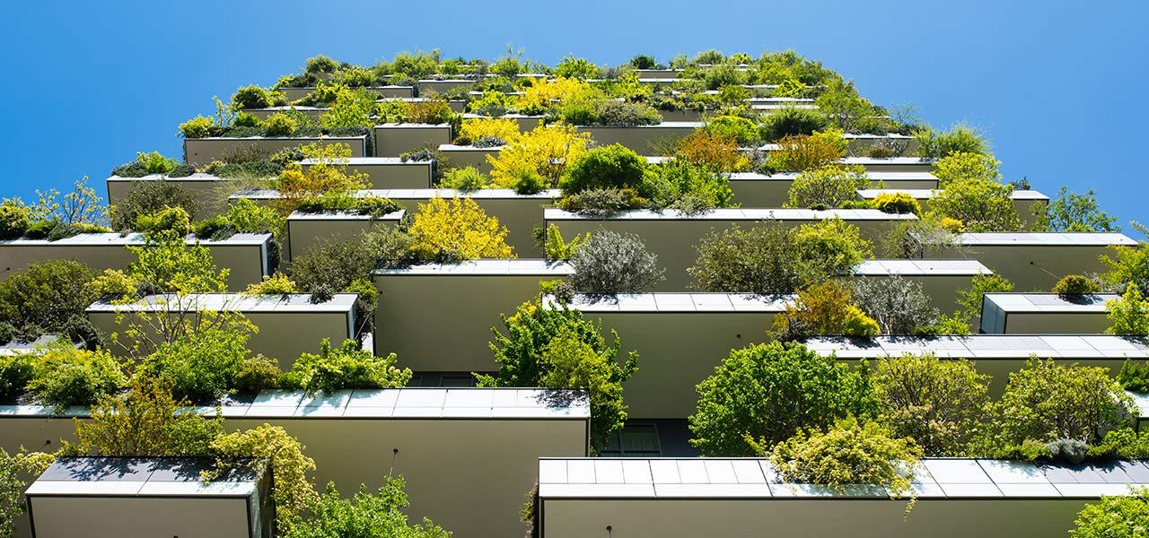 orti urbani giardini verticali