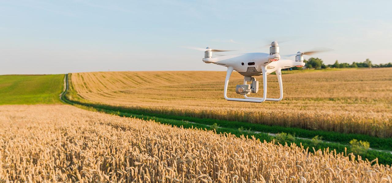 agricoltura sostenibile 4.0