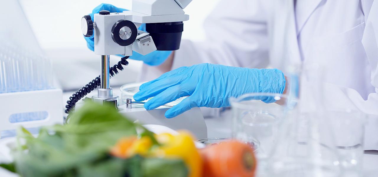 agritech foodtech